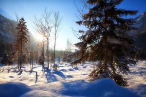 lyžovanie sneh